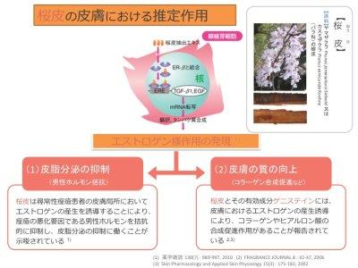 画像2: Dr.Kumiko モイストクリーム しみ予防 糖化防止成分入り 3本セット